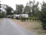Pitch - Pitch - By a lake 80m² min. (electricity 6A) - Camping Village Grand Sud