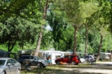 Pitch - Natura Duo Pitch (1Car With Tent Or Caravan /1Motorhome) - Camping l'Art de Vivre