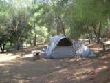 Pitch - Nature Package Little Tent + Car + Electricity - Camping Torraccia