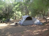 Pitch - Nature Package Big Tent + Car + Electricity - Camping Torraccia