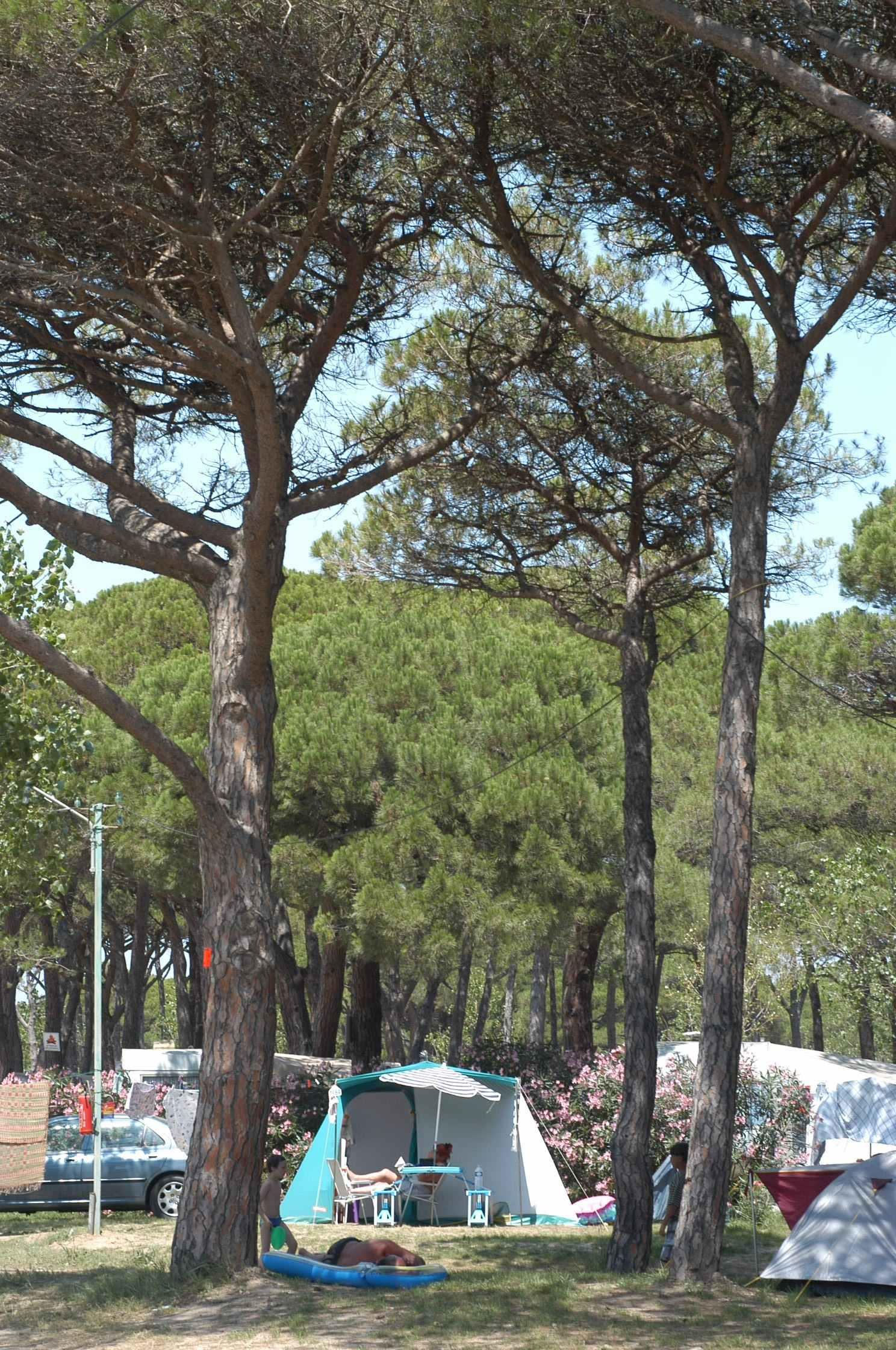 lire les avis du camping de saint aygulf plage. Black Bedroom Furniture Sets. Home Design Ideas