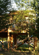 Rental - Tree house Premium 24m² (2 bedrooms) + terrace - CosyCamp