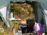 Pitch - Camping pitch NATURE 100m² - Price for 2 pers. without electricity - CosyCamp