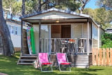 Rental - Chalet Tendance Sud  20 M² / 2 Bedrooms - Covered Wooden Terrace + Tv - Camping Holiday Green