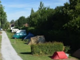 Pitch - Packages pitch + car + electricity 16A + 2 adults - Camping LA PETITE FORET