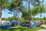 Pitch - Pitch Luce Tent / Camping-Car - Camping Parco Capraro