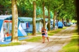 Pitch - Special Pitch + camping-car - Camping Parco Capraro