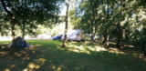 Pitch - Pitch With Car + Tent/Caravan - Camping de Civray