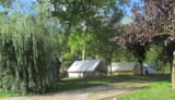 Rental - Tent With Single Beds - Camping de la Moselle