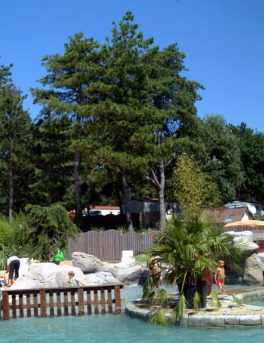 Read the reviews From Camping Le Bois Dormant # Camping Le Bois De Pins