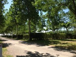 Emplacement - Emplacement - Camping Saint-Meen