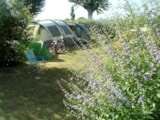 Pitch - Comfort Package (1 Tent Or Caravan + 1 Car / 1 Motorhome + Electricity 10A) - Camping Grand'R