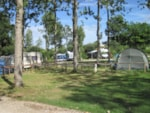Pitch - Privilege Package (1 tent, caravan or motorhome / 1 car / electricity 16A)  Spacious pitch - Campilô