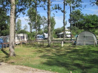 Privilege Package (1 tent, caravan or motorhome / 1 car / electricity 16A)  Spacious pitch