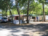 Pitch - Pitch Caravan - IDEAL CAMPING