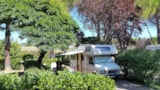 Pitch - Comfort Package (1 tent, caravan or motorhome / 1 car / electricity 9A) - Flower Camping Provence Vallée