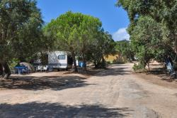 Establishment Camping Le Damier - Pianottoli Caldarello