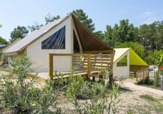 Tent Lodge Junior (Without Toilet Blocks)