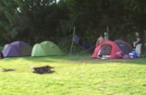 Pitch - grass tent (only 1) pitch for july and august in natural area - Camping La Kilienne