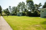 Pitch - Pitch with private facilities - Recreatiepark Boslust