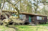 Rental - Group Cabin 63 - - Camping Le Roptai