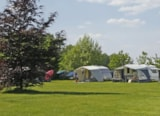 Pitch - Pitch + car + big tent or caravan - Campingplatz im Siebengebirge