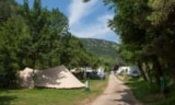 Pitch - Pitch: car + tent/caravan or camping-car + electricity - Camping Le Capelan
