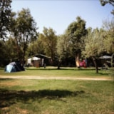 Pitch - Package: Pitch + car + tent + electricity - Camping Campo dei Fiori