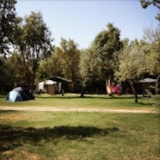Pitch - Package: Pitch + car + caravan + electricity - Camping Campo dei Fiori