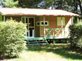 Rental - Chalet Class3 Comfort Wheelchair Friendly 46M² (2 Bedrooms) + Sheltered Terrace - Camping Domaine La Plage du Garoustel