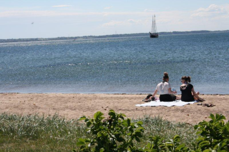 Plages Rosenvold Strand Camping - Stouby