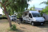 Pitch - Pitch for Camper/ Caravan - Lilybeo Camping Village