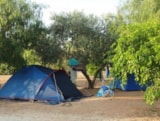 Pitch - Pitch for small tent - Lilybeo Camping Village