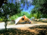 Pitch - Pitch For Family Tent - Lilybeo Camping Village
