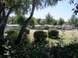 Pitch - Package: Pitch + 1 Car + Tent Or Caravan - Camping Le Bois Verdon