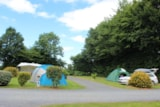 Pitch - Pitch : car + tent/caravan or camping-car+ electricity 10A + 1 child - 7 years - Camping Le Clos de Balleroy