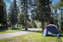 Establishment Camping La Forêt - Montvalezan