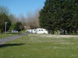 Pitch - PITCH - 2 People + vehicle + electricity - Camping Riva Bella
