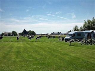 Agro-camping  Ormsby Field - Castricum