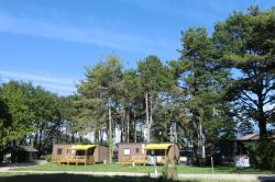 Establishment Camping Parc De La Dranse - Publier