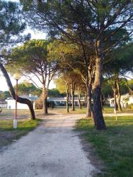 Establishment Marina Julia Camping Village - Monfalcone