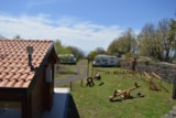 Pitch - Pitch Caravan + Vehicle - Mons Gibel Camping Park