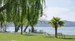 Establishment Camping Trasimeno - Passignano Sul Trasimeno