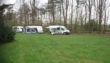 Pitch - Camping Pitch Comfort - Camping Borken am See