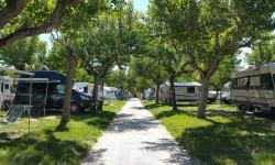 Establishment Camping Adria - Riccione