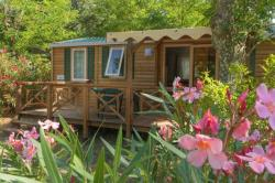 Accommodation - Mobilhome Sun 28M² - Capfun - Domaine Le Temps Libre