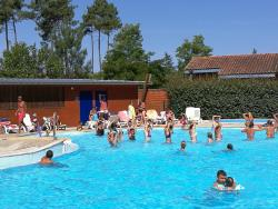Entertainment organised Village Les Pins D'or - Bias