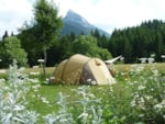 Pitch - Pitch : caravan or tent + car or camping-car - Camping Sites et Paysages DE MARTINIÈRE