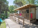 Rental - Cottage Handi *** - 2 Bedrooms / Adapted To The People With Reduced Mobility - YELLOH! VILLAGE - LA BASTIANE