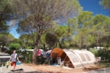 Pitch - Package 2P RELAX ** : Caravan or Tent / Auto and 10 amp including - YELLOH! VILLAGE - LA BASTIANE
